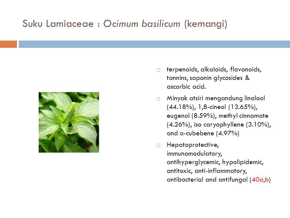 Suku Lamiaceae : Ocimum basilicum (kemangi)  terpenoids, alkaloids, flavonoids, tannins, saponin glycosides & ascorbic acid.  Minyak atsiri mengandu