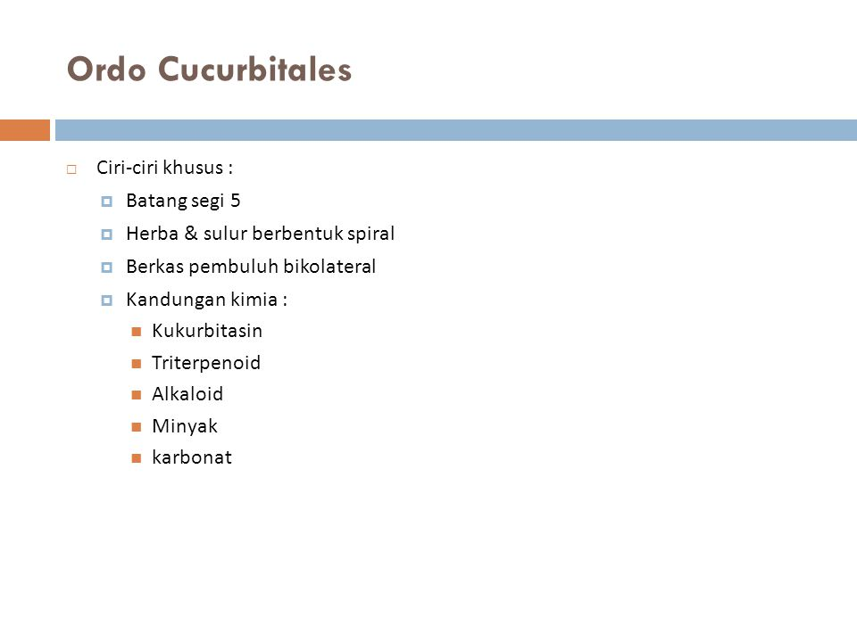 Ordo Cucurbitales  Ciri-ciri khusus :  Batang segi 5  Herba & sulur berbentuk spiral  Berkas pembuluh bikolateral  Kandungan kimia : Kukurbitasin