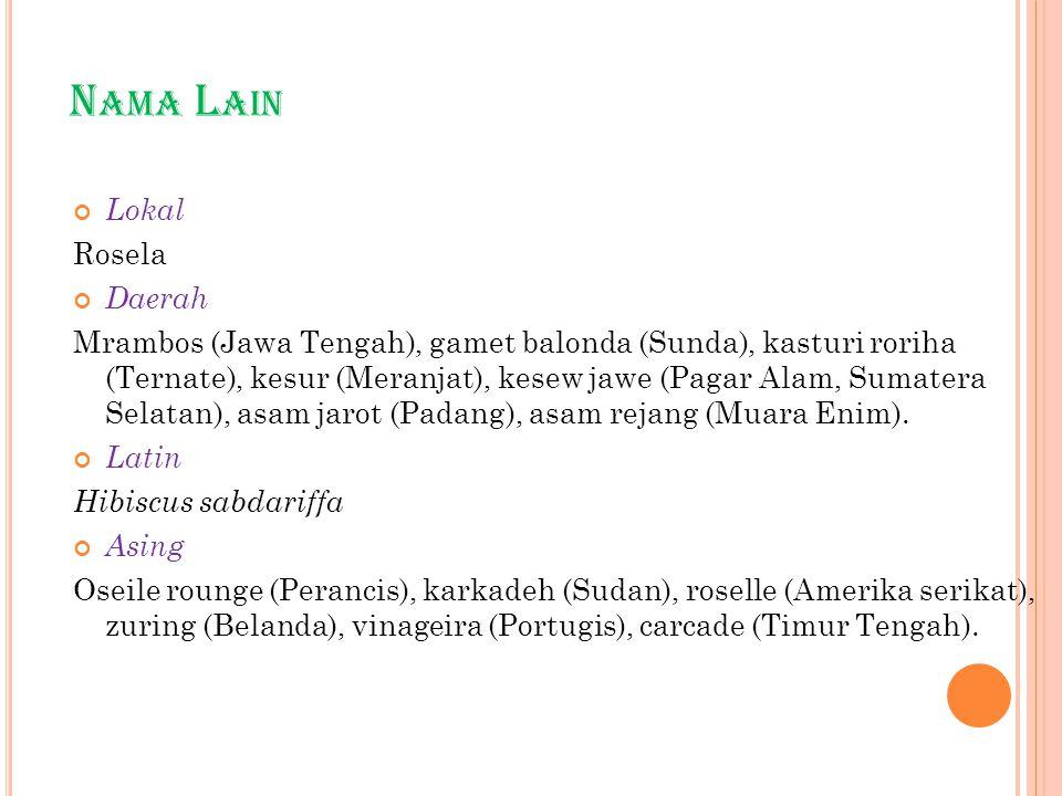 N AMA L AIN Lokal Rosela Daerah Mrambos (Jawa Tengah), gamet balonda (Sunda), kasturi roriha (Ternate), kesur (Meranjat), kesew jawe (Pagar Alam, Suma