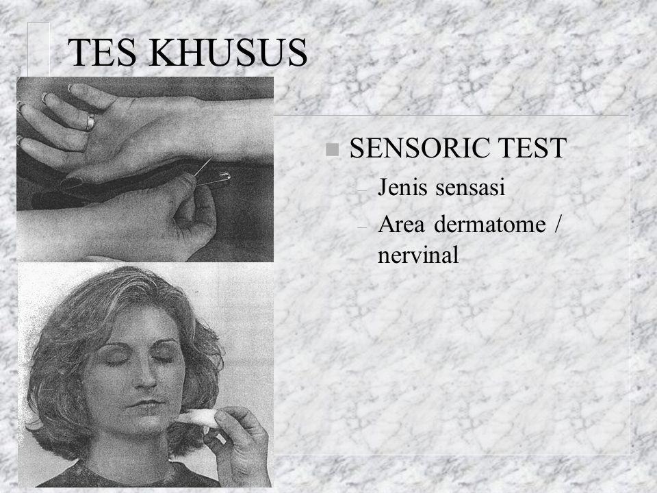 TES KHUSUS n SENSORIC TEST – Jenis sensasi – Area dermatome / nervinal