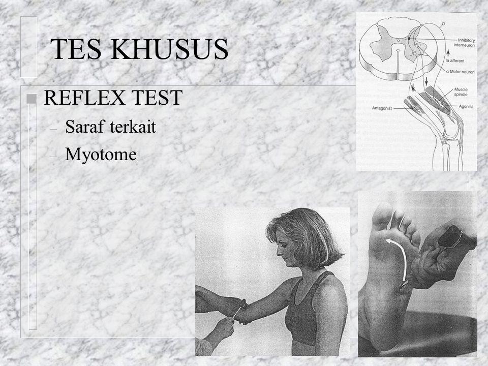 TES KHUSUS n REFLEX TEST – Saraf terkait – Myotome
