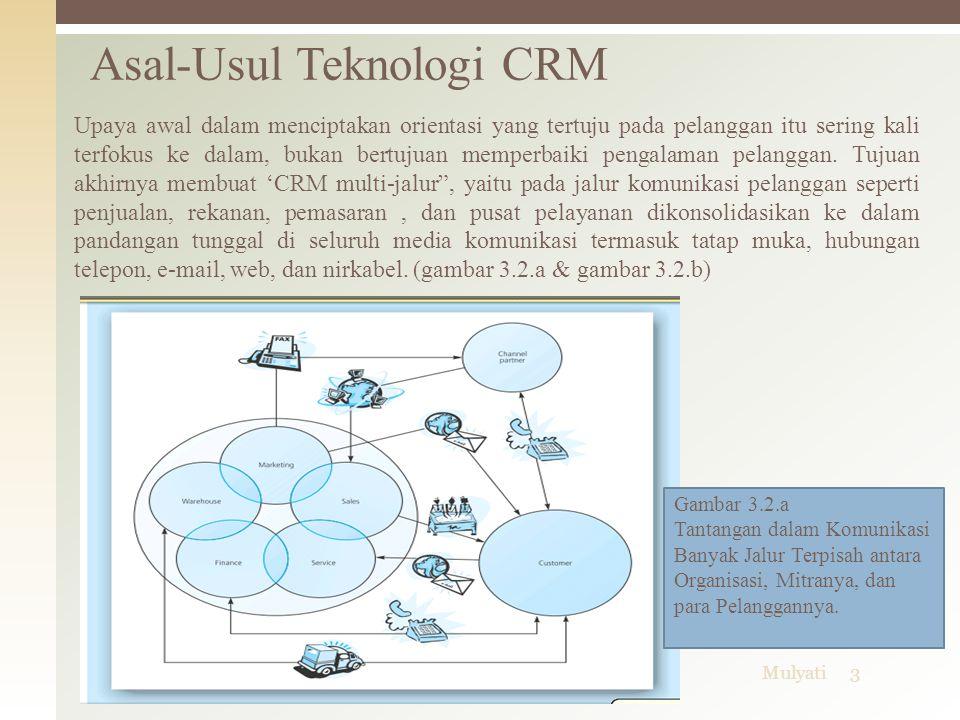 06/04/2015Mulyati3 Asal-Usul Teknologi CRM Gambar 3.2.a Tantangan dalam Komunikasi Banyak Jalur Terpisah antara Organisasi, Mitranya, dan para Pelangg