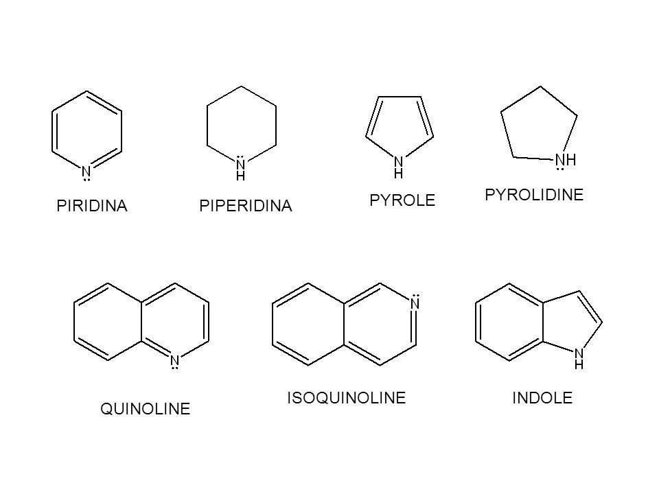 PIRIDINAPIPERIDINA PYROLE PYROLIDINE QUINOLINE ISOQUINOLINEINDOLE