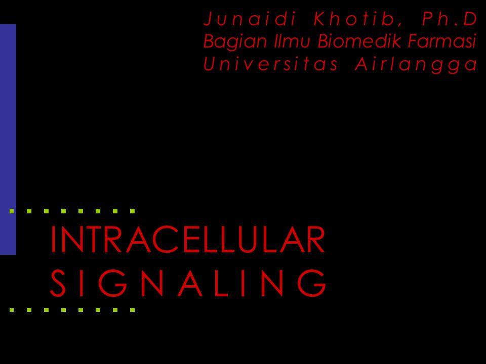 Jalur penghantaran signal intraselular -Molekul pembawa signal (ligand)/first messenger -Reseptor -Second messenger -Intracellular signal -Protein target -Respon Figure 6-3: Signal pathways