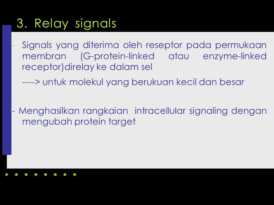 3. Relay signals -Signals yang diterima oleh reseptor pada permukaan membran (G-protein-linked atau enzyme-linked receptor)direlay ke dalam sel ---->
