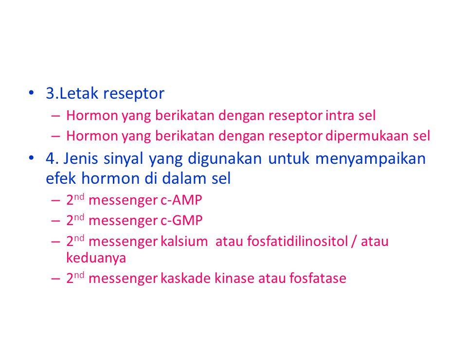 3.Letak reseptor – Hormon yang berikatan dengan reseptor intra sel – Hormon yang berikatan dengan reseptor dipermukaan sel 4.