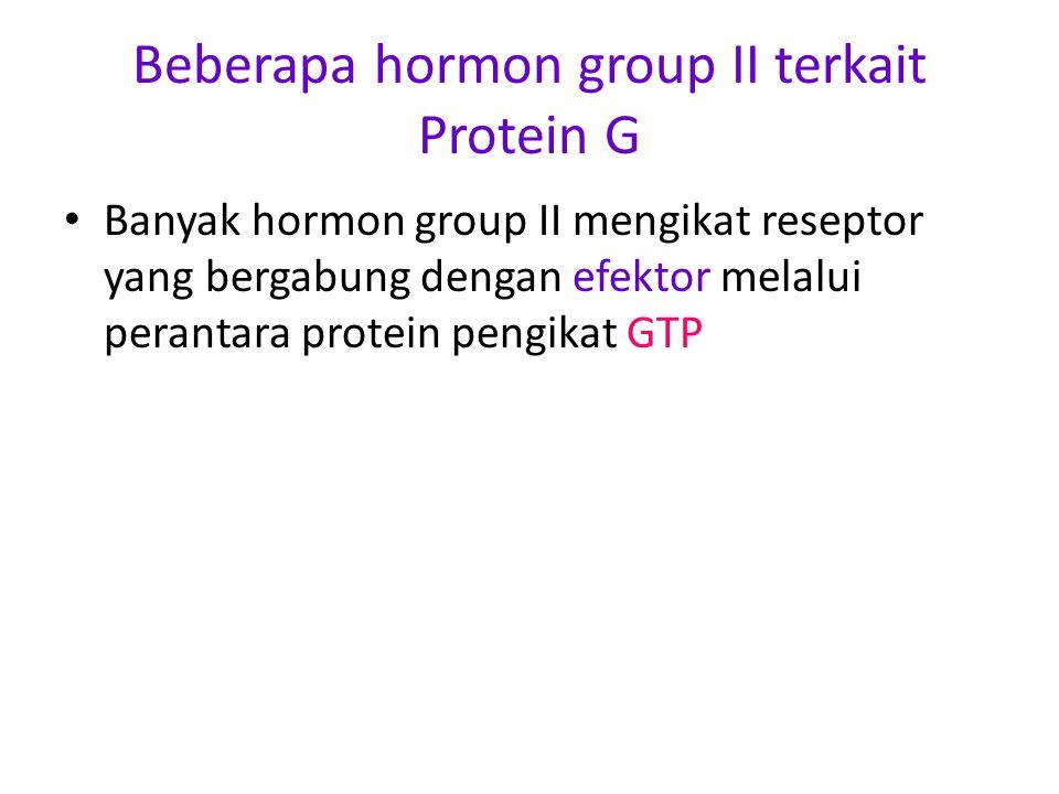 Beberapa hormon group II terkait Protein G Banyak hormon group II mengikat reseptor yang bergabung dengan efektor melalui perantara protein pengikat GTP