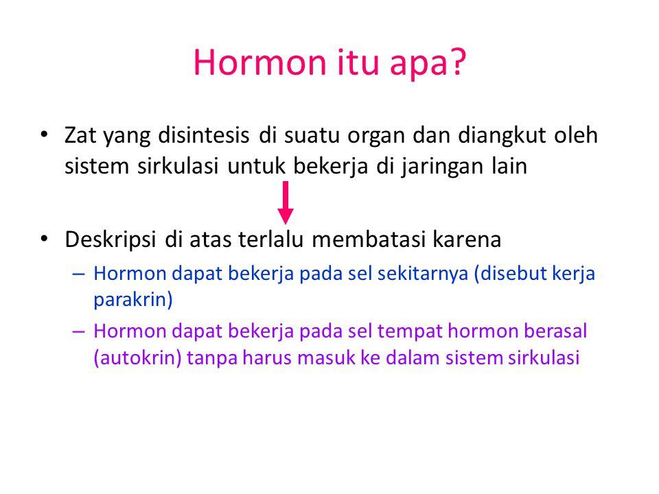 Hormon itu apa.