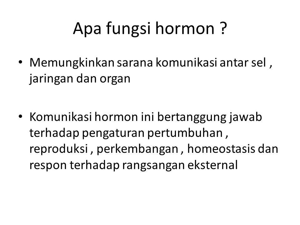 Apa fungsi hormon .