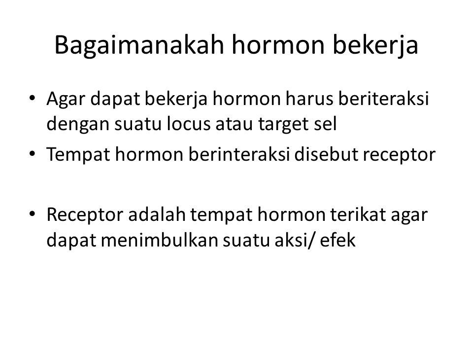 Bagaimanakah hormon bekerja Agar dapat bekerja hormon harus beriteraksi dengan suatu locus atau target sel Tempat hormon berinteraksi disebut receptor Receptor adalah tempat hormon terikat agar dapat menimbulkan suatu aksi/ efek