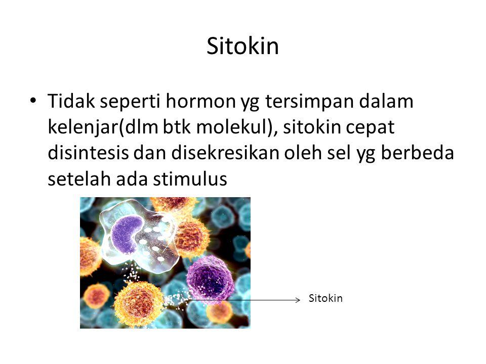 Sitokin Tidak seperti hormon yg tersimpan dalam kelenjar(dlm btk molekul), sitokin cepat disintesis dan disekresikan oleh sel yg berbeda setelah ada s