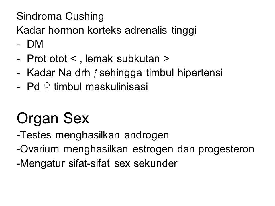 Sindroma Cushing Kadar hormon korteks adrenalis tinggi -DM -Prot otot -Kadar Na drh sehingga timbul hipertensi -Pd ♀ timbul maskulinisasi Organ Sex -Testes menghasilkan androgen -Ovarium menghasilkan estrogen dan progesteron -Mengatur sifat-sifat sex sekunder