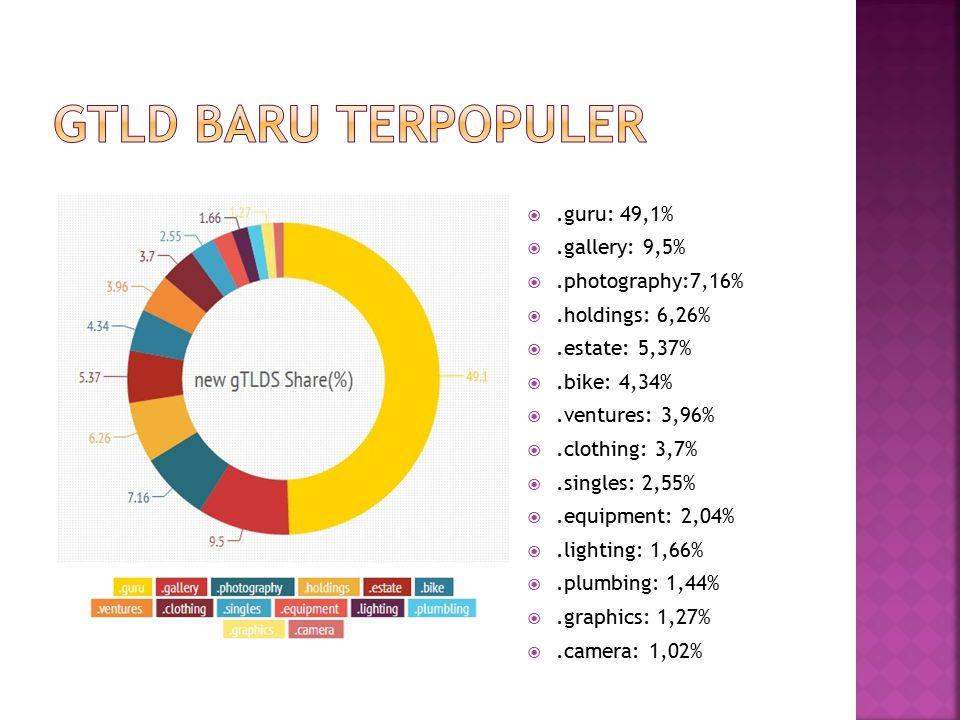 .guru: 49,1% .gallery: 9,5% .photography:7,16% .holdings: 6,26% .estate: 5,37% .bike: 4,34% .ventures: 3,96% .clothing: 3,7% .singles: 2,55%