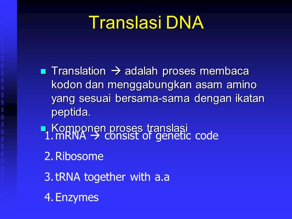 Translasi DNA Translation  adalah proses membaca kodon dan menggabungkan asam amino yang sesuai bersama-sama dengan ikatan peptida. Translation  ada