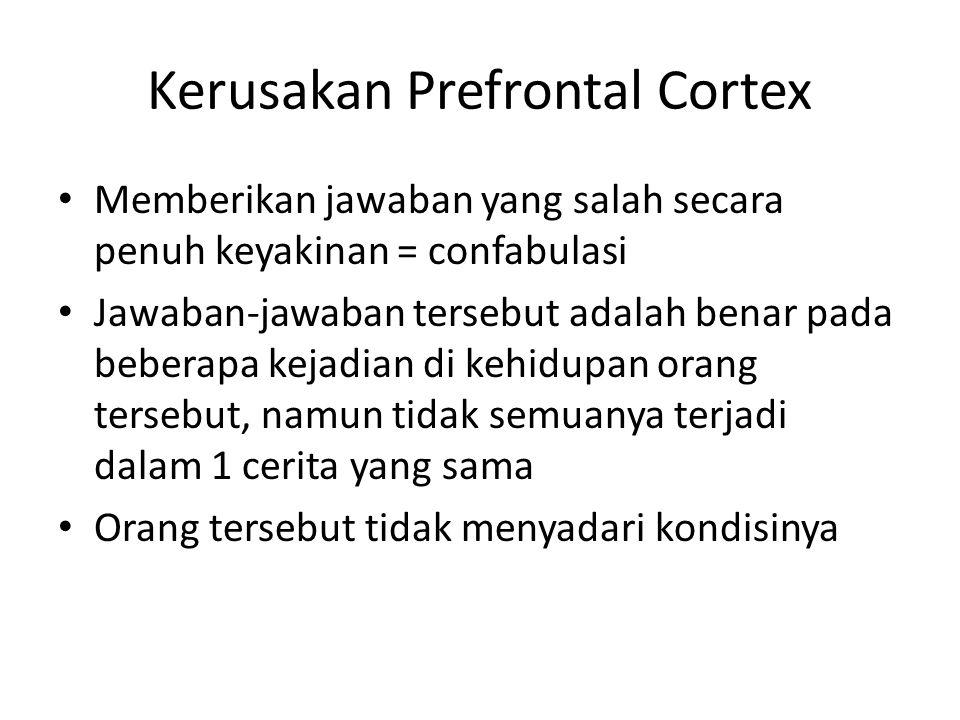 Kerusakan Prefrontal Cortex Memberikan jawaban yang salah secara penuh keyakinan = confabulasi Jawaban-jawaban tersebut adalah benar pada beberapa kejadian di kehidupan orang tersebut, namun tidak semuanya terjadi dalam 1 cerita yang sama Orang tersebut tidak menyadari kondisinya
