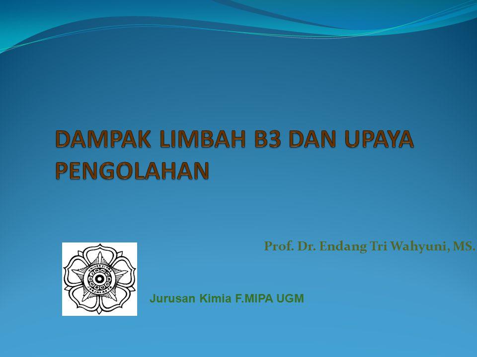 Prof. Dr. Endang Tri Wahyuni, MS. Jurusan Kimia F.MIPA UGM