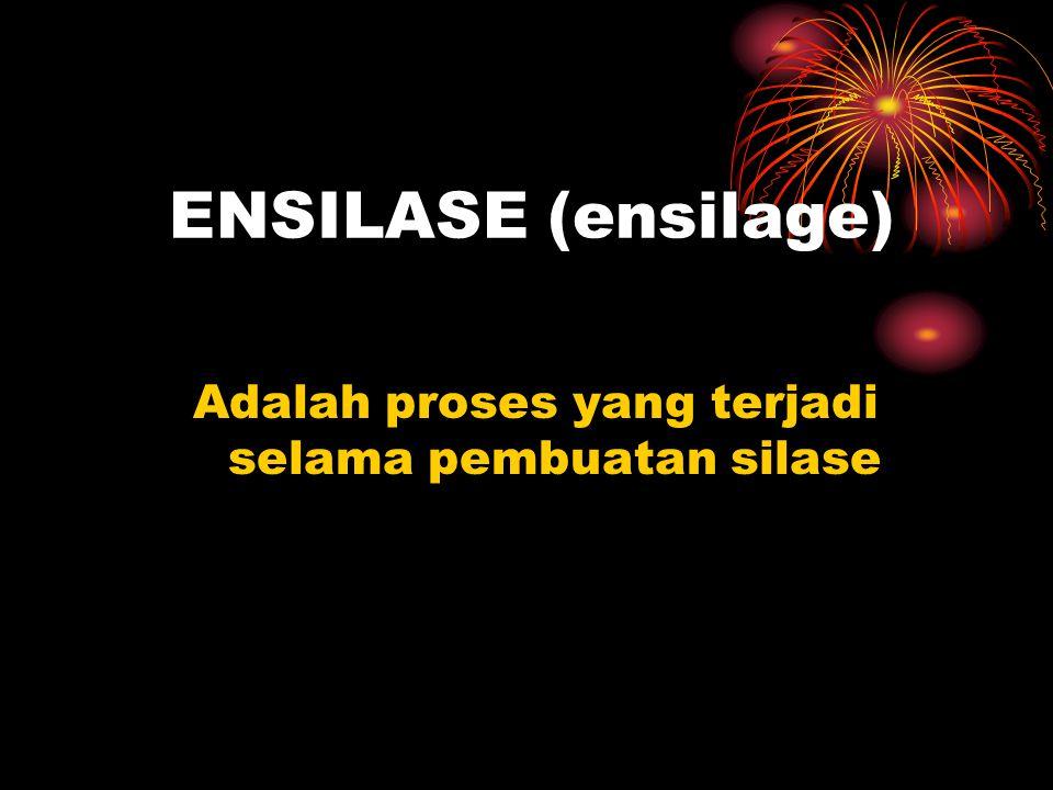 ENSILASE (ensilage) Adalah proses yang terjadi selama pembuatan silase