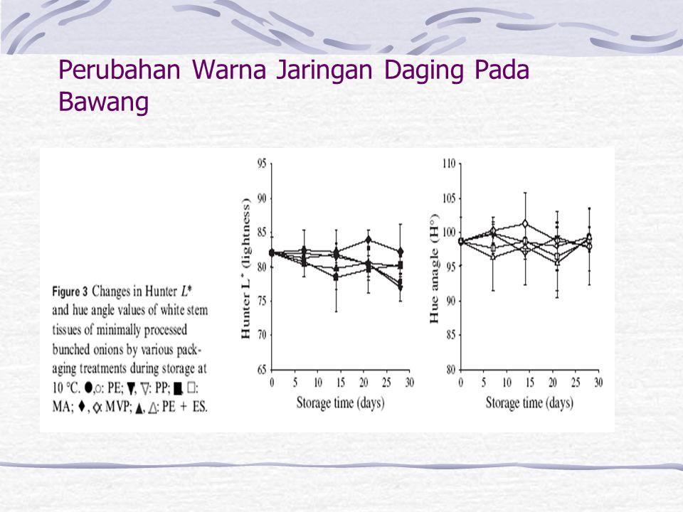Perubahan Warna Jaringan Daging Pada Bawang