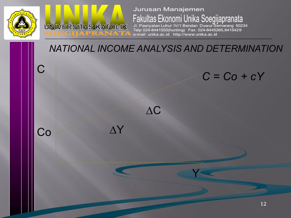 12 NATIONAL INCOME ANALYSIS AND DETERMINATION Co YY CC C = Co + cY C Y