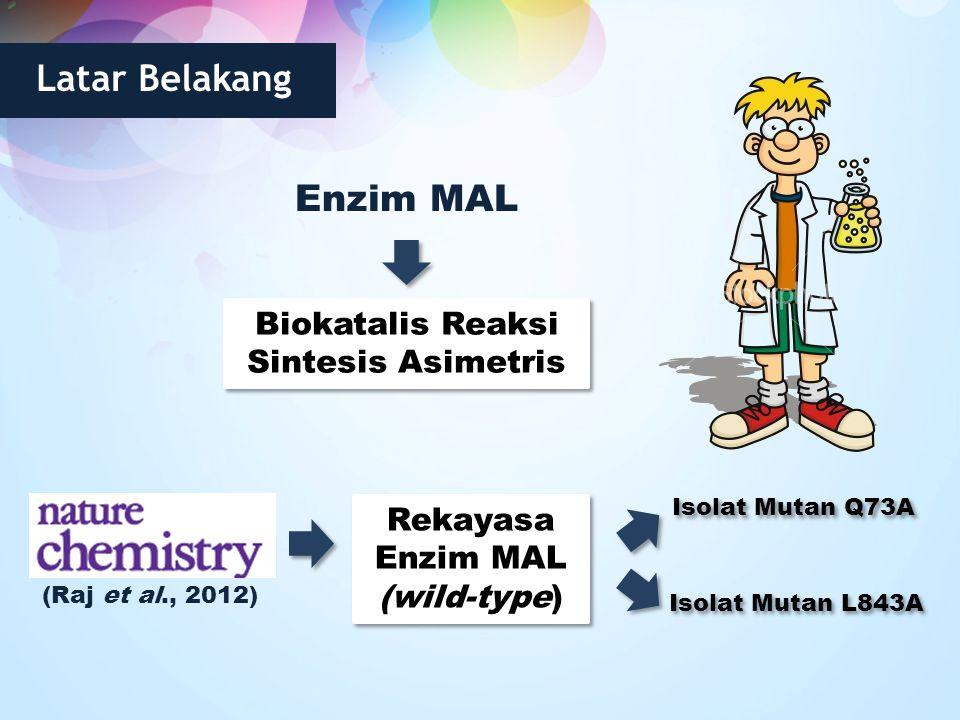 Latar Belakang Enzim MAL Biokatalis Reaksi Sintesis Asimetris (Raj et al., 2012) Rekayasa Enzim MAL (wild-type) Rekayasa Enzim MAL (wild-type) Isolat