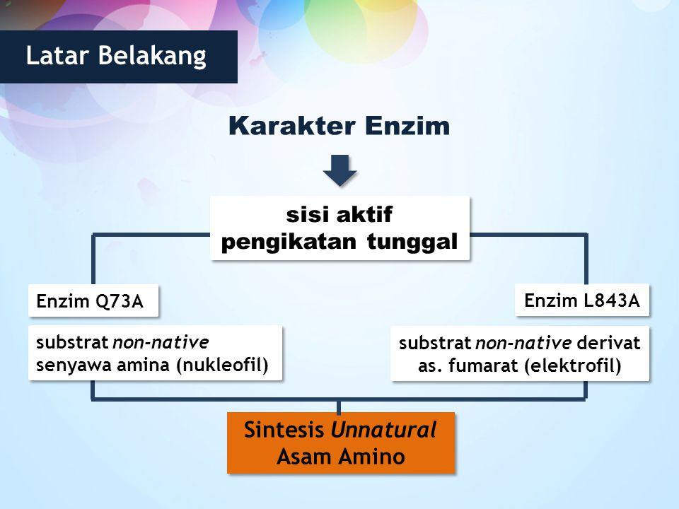 Latar Belakang Karakter Enzim Enzim L843A sisi aktif pengikatan tunggal Enzim Q73A substrat non-native senyawa amina (nukleofil) substrat non-native d