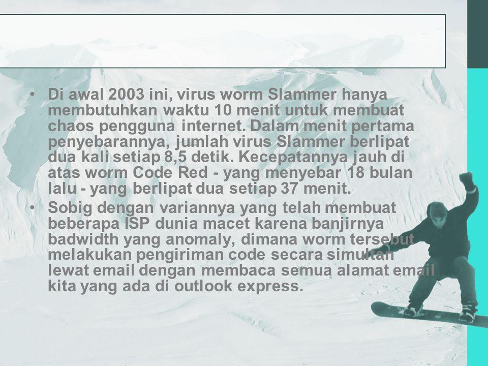 Di awal 2003 ini, virus worm Slammer hanya membutuhkan waktu 10 menit untuk membuat chaos pengguna internet.