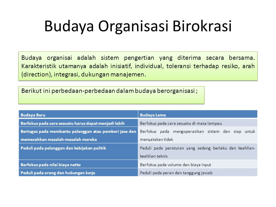 Budaya Organisasi Birokrasi Budaya organisai adalah sistem pengertian yang diterima secara bersama. Karakteristik utamanya adalah inisiatif, individua
