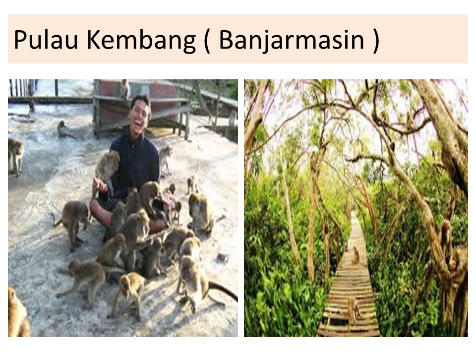 Pulau Kembang ( Banjarmasin )