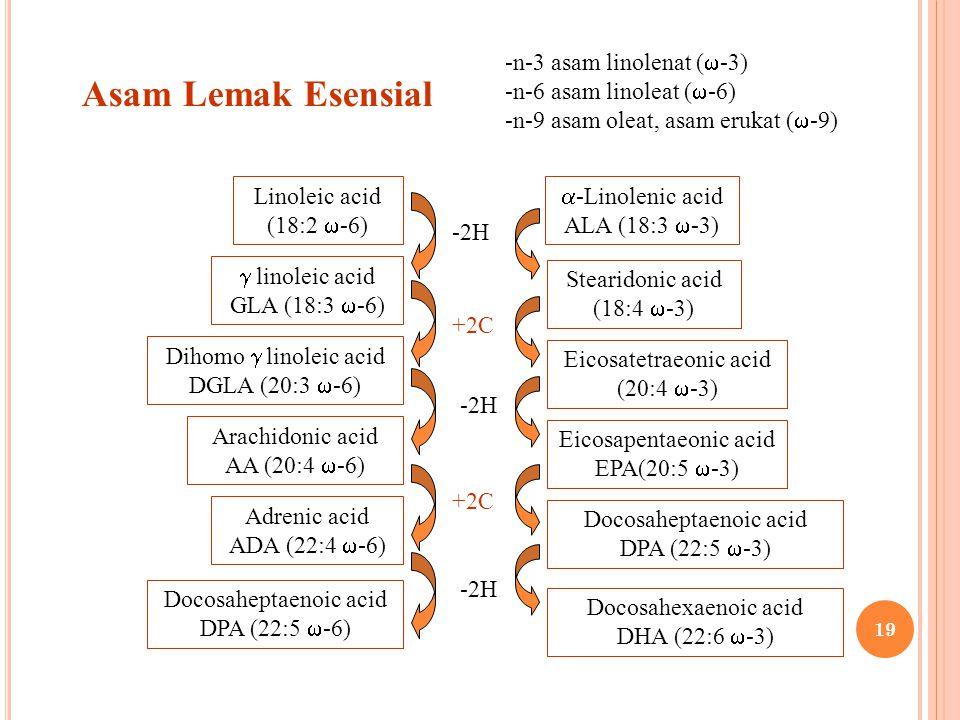Asam Lemak Esensial -n-3 asam linolenat (  -3) -n-6 asam linoleat (  -6) -n-9 asam oleat, asam erukat (  -9) Linoleic acid (18:2  -6)  linoleic a