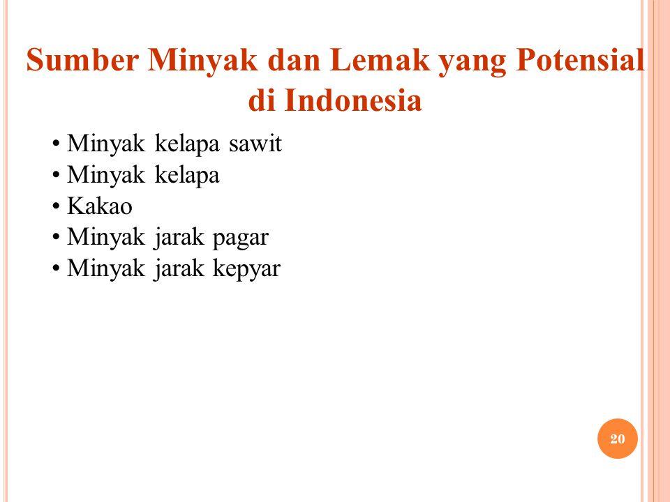 Sumber Minyak dan Lemak yang Potensial di Indonesia Minyak kelapa sawit Minyak kelapa Kakao Minyak jarak pagar Minyak jarak kepyar 20