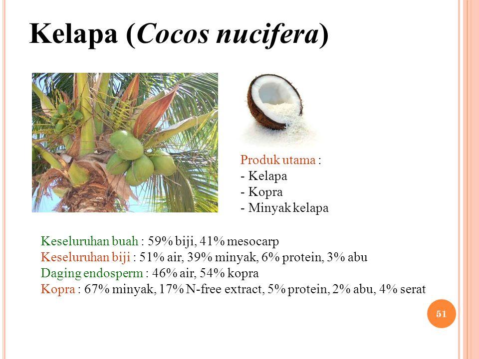 Kelapa (Cocos nucifera) Produk utama : - Kelapa - Kopra - Minyak kelapa Keseluruhan buah : 59% biji, 41% mesocarp Keseluruhan biji : 51% air, 39% miny