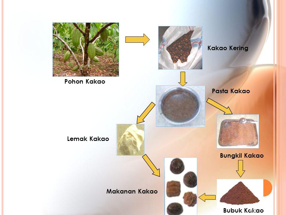 Pohon Kakao Makanan Kakao Bungkil Kakao Lemak Kakao Pasta Kakao Kakao Kering Bubuk Kakao 81