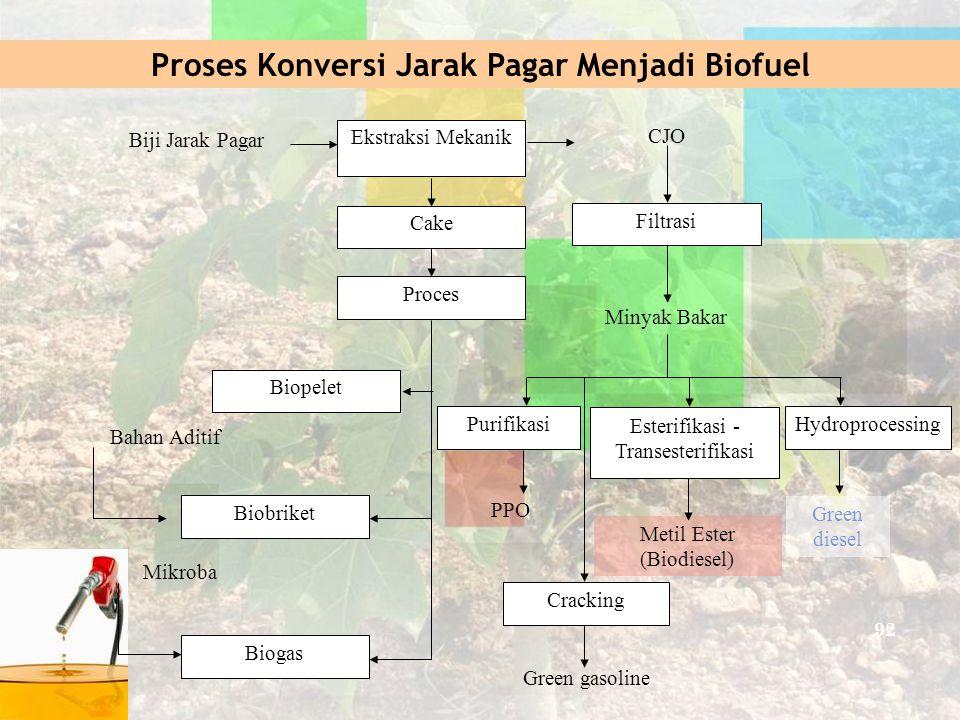 Proses Konversi Jarak Pagar Menjadi Biofuel Biji Jarak Pagar Ekstraksi Mekanik CJO Cake Proces Biopelet Biobriket Biogas Bahan Aditif Filtrasi Minyak