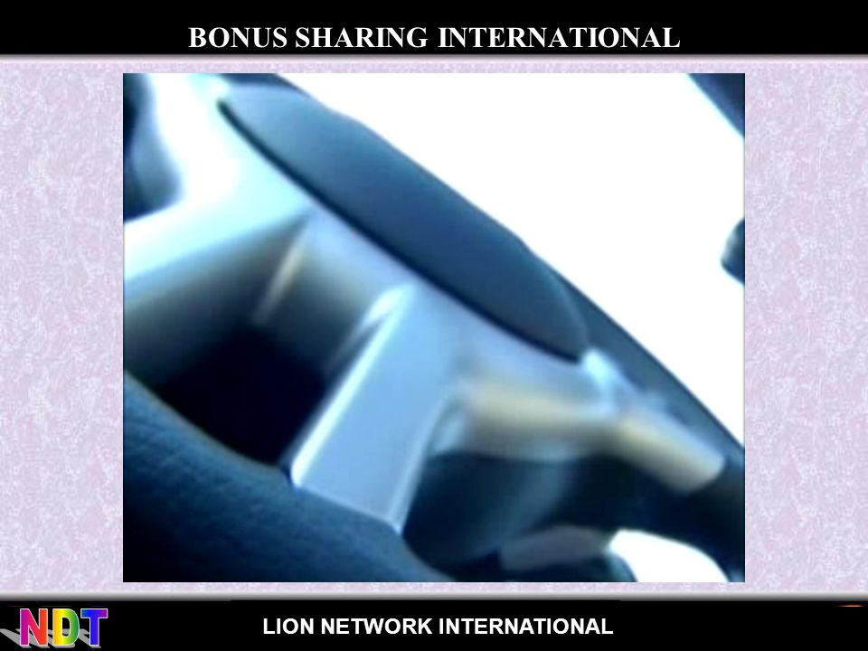 for LION NETWORK INTERNATIONAL BONUS SHARING INTERNATIONAL