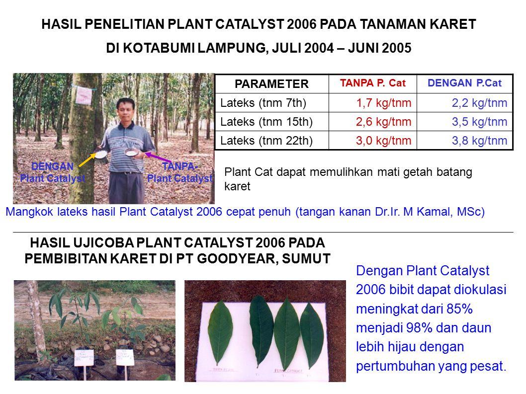Mangkok lateks hasil Plant Catalyst 2006 cepat penuh (tangan kanan Dr.Ir. M Kamal, MSc) DENGAN Plant Catalyst TANPA- Plant Catalyst HASIL PENELITIAN P