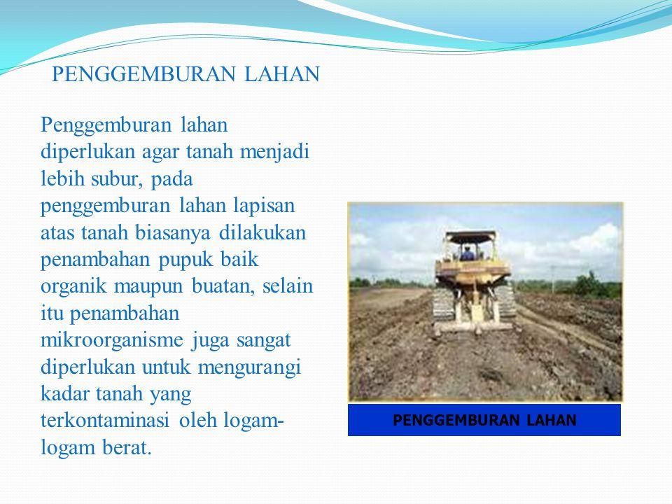 PENGGEMBURAN LAHAN Penggemburan lahan diperlukan agar tanah menjadi lebih subur, pada penggemburan lahan lapisan atas tanah biasanya dilakukan penamba