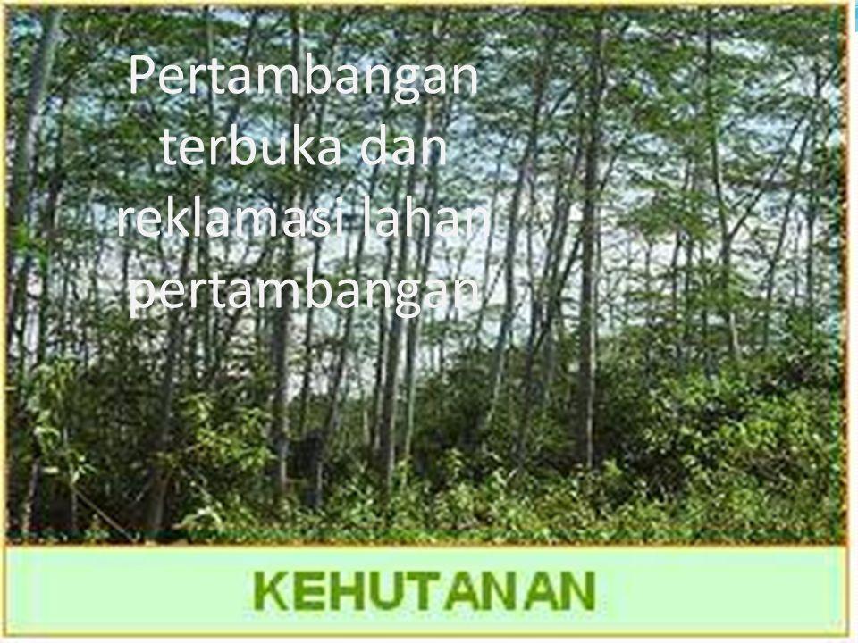Tanaman penutup berfungsi untuk : 1.Meningkatkan kesuburan dan kelembaban tanah 2.Pengendali erosi 3.Habitat awal fauna 4.Tempat tumbuh tanaman lain yang bijinya terbawa oleh fauna/binatang
