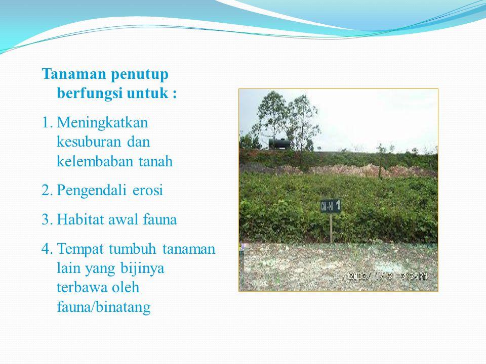 Tanaman penutup berfungsi untuk : 1.Meningkatkan kesuburan dan kelembaban tanah 2.Pengendali erosi 3.Habitat awal fauna 4.Tempat tumbuh tanaman lain y