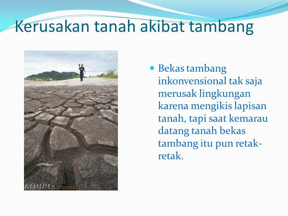 Kerusakan tanah akibat tambang Bekas tambang inkonvensional tak saja merusak lingkungan karena mengikis lapisan tanah, tapi saat kemarau datang tanah