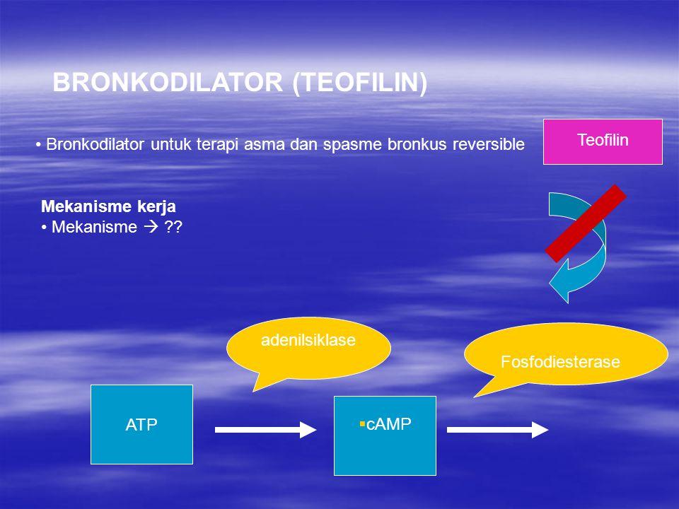 . adenilsiklase Fosfodiesterase ATP  cAMP Teofilin BRONKODILATOR (TEOFILIN) Bronkodilator untuk terapi asma dan spasme bronkus reversible Mekanisme k