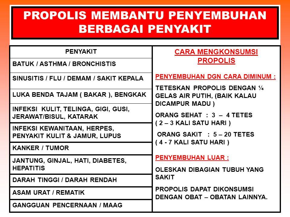 PROPOLIS MEMBANTU PENYEMBUHAN BERBAGAI PENYAKIT PENYAKIT BATUK / ASTHMA / BRONCHISTIS SINUSITIS / FLU / DEMAM / SAKIT KEPALA LUKA BENDA TAJAM ( BAKAR