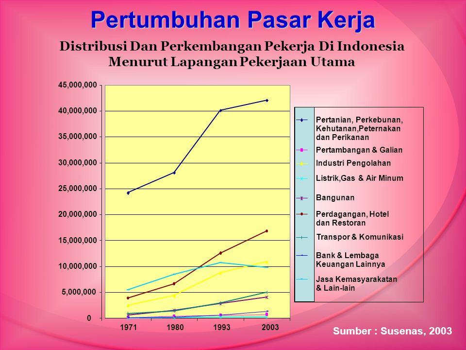 Pertumbuhan Pasar Kerja 0 5,000,000 10,000,000 15,000,000 20,000,000 25,000,000 30,000,000 35,000,000 40,000,000 45,000,000 1971198019932003 Pertanian