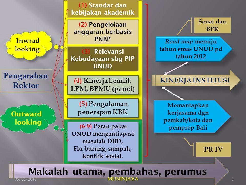 Pengarahan Rektor (3) Relevansi Kebudayaan sbg PIP UNUD (1) Standar dan kebijakan akademik (2) Pengelolaan anggaran berbasis PNBP (4) Kinerja Lemlit, LPM, BPMU (panel) (6-9) Peran pakar UNUD mengantispasi masalah DBD, Flu burung, sampah, konflik sosial.