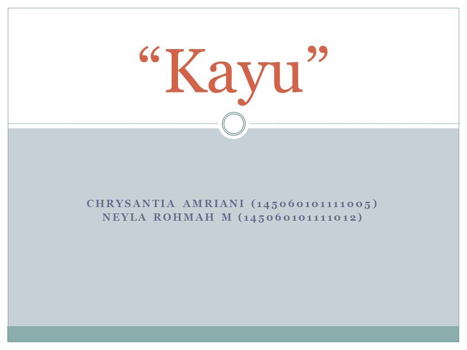 "CHRYSANTIA AMRIANI (145060101111005) NEYLA ROHMAH M (145060101111012) ""Kayu"""