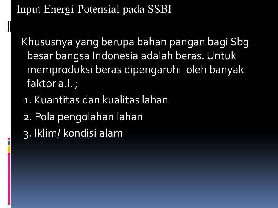 Input Energi Potensial pada SSBI Khususnya yang berupa bahan pangan bagi Sbg besar bangsa Indonesia adalah beras.