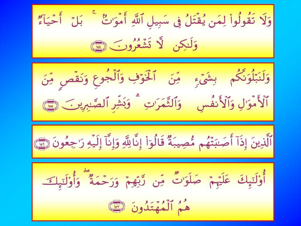 157. Mereka Itulah yang mendapat keberkatan yang Sempurna dan rahmat dari Tuhan mereka dan mereka Itulah orang- orang yang mendapat petunjuk. Mereka i
