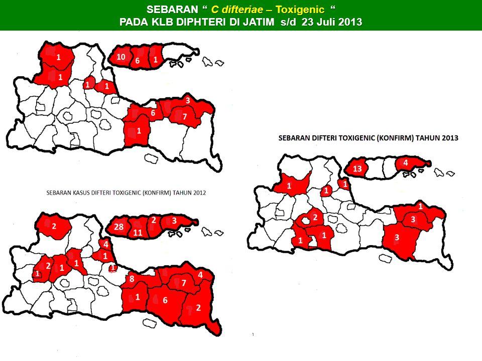 """bwk keren SEBARAN """" C difteriae – Toxigenic """" PADA KLB DIPHTERI DI JATIM s/d 23 Juli 2013"""
