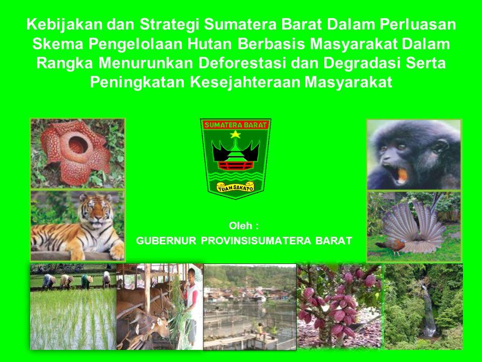 Kebijakan dan Strategi Sumatera Barat Dalam Perluasan Skema Pengelolaan Hutan Berbasis Masyarakat Dalam Rangka Menurunkan Deforestasi dan Degradasi Se