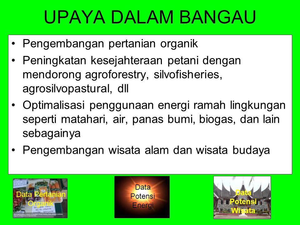 Potensi Energi Hijau di Sumbar NOJenis EnergiKabupaten/Kota yang Potensial Perkiraan energi listrik yang dihasilkan 1Panas BumiSolok, Solok Selatan, Pasaman, Pasaman Barat, Limah Puluh kota, Tanah Datar, dan Agam yang tersebar di 17 titik 1.656 MW 2AnginPesisir Selatan, Padang, Pariaman, Padang Pariaman, Agam dan Pasaman Barat serta Kepulauan Mentawai Ada potensi 3OmbakPesisir Selatan, Padang, Pariaman, Padang Pariaman, Agam dan Pasaman Barat serta Kepulauan Mentawai Ada potensi 4AirAgam, Lima Puluh Kota, Pasaman, Solok, Pessel, Sijunjung, Tanah Datar, Solsel dan Pasaman Barat 2.424 KVA 5Suhu Laut atau OTEC (Ocean Thermal Energy Convertion) Kepulauan Mentawai, Kota Padang, Pesisir Selatan Ada potensi Sumber : KKI Warsi, 2012 Kembali