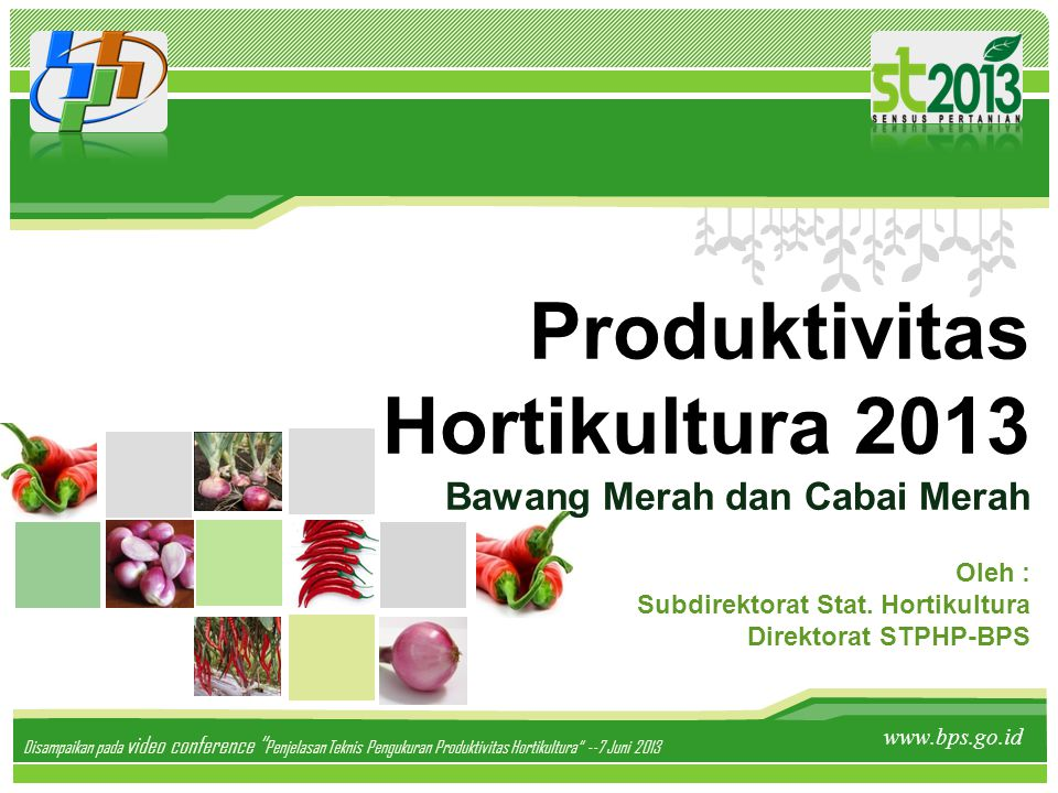 """Produktivitas Hortikultura 2013 Bawang Merah dan Cabai Merah www.bps.go.id Disampaikan pada video conference """" Penjelasan Teknis Pengukuran Produktivi"""